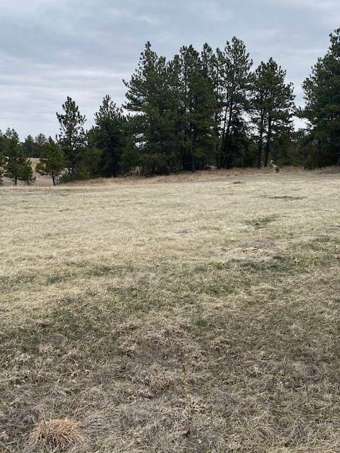 TBD Darlene Court, Hot Springs, SD 57747 (MLS #64321) :: Dupont Real Estate Inc.