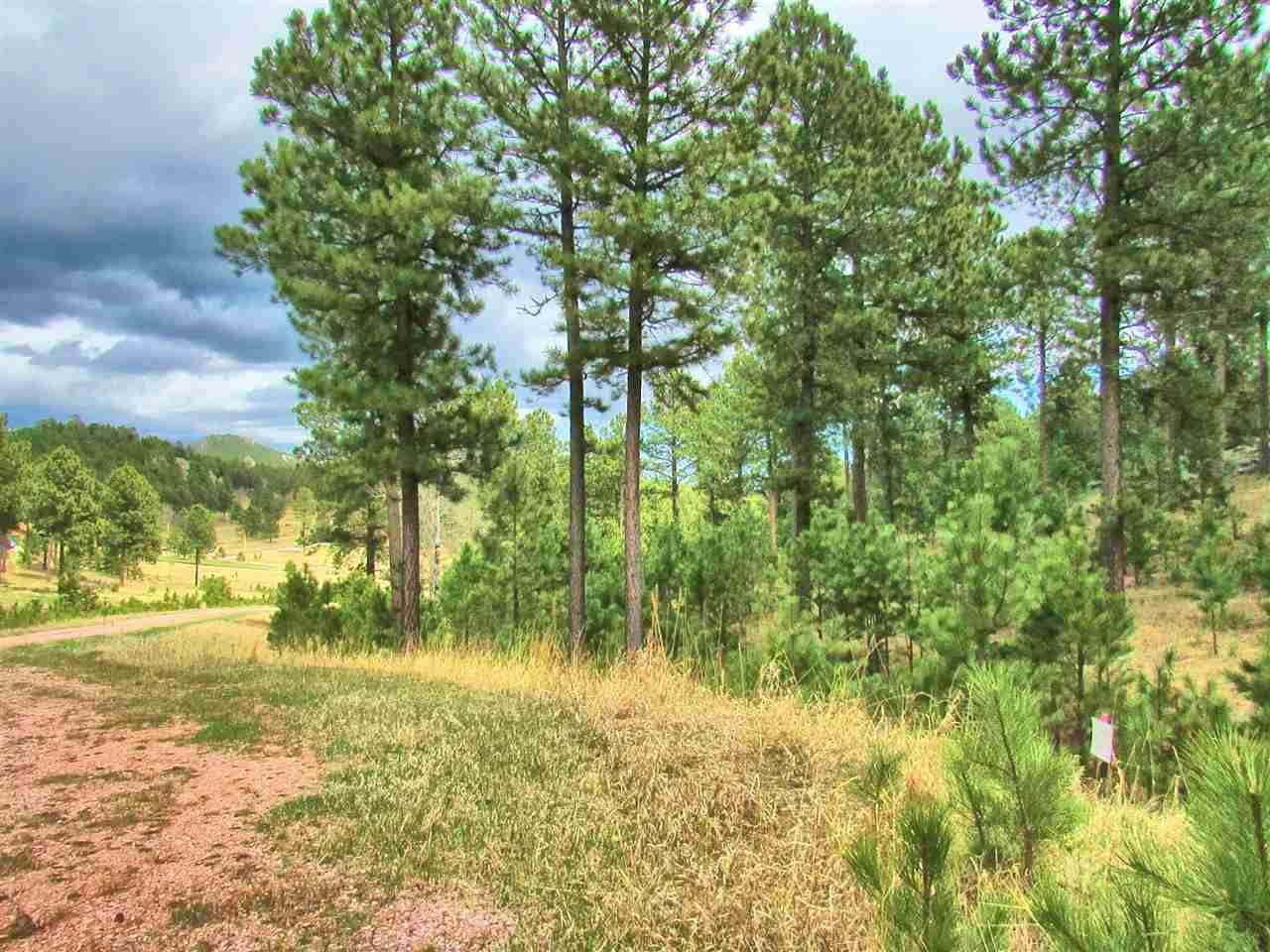 Lot 11 Cedar Berry Trail - Photo 1