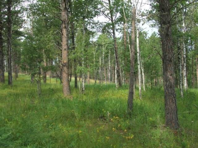 Lot 25 Bogey Circle, Lead, SD 57754 (MLS #64757) :: Christians Team Real Estate, Inc.