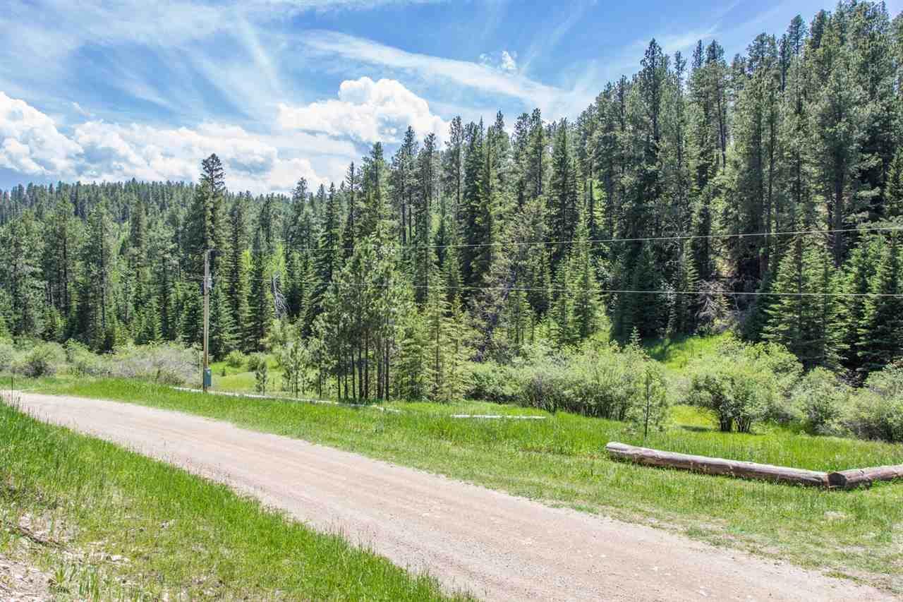 21505 Mountain Stream Road - Photo 1