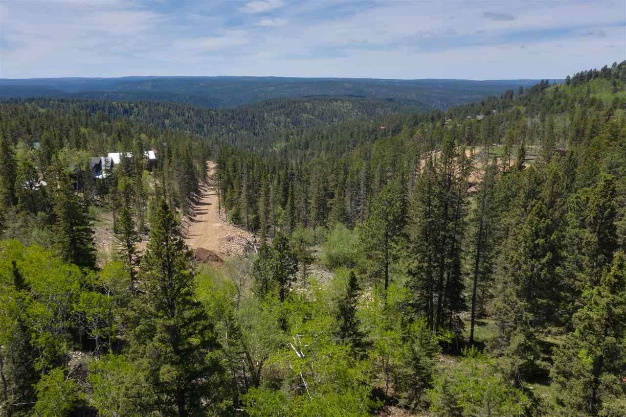 11044 Antelope Trail - Photo 1