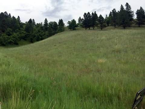 Lot L Lance Lane, Piedmont, SD 57769 (MLS #65068) :: VIP Properties
