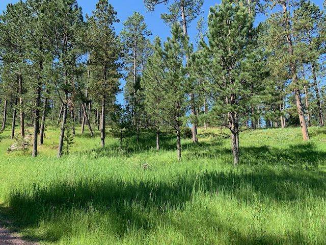 TBD Star Ridge Road, Custer, SD 57730 (MLS #65268) :: VIP Properties