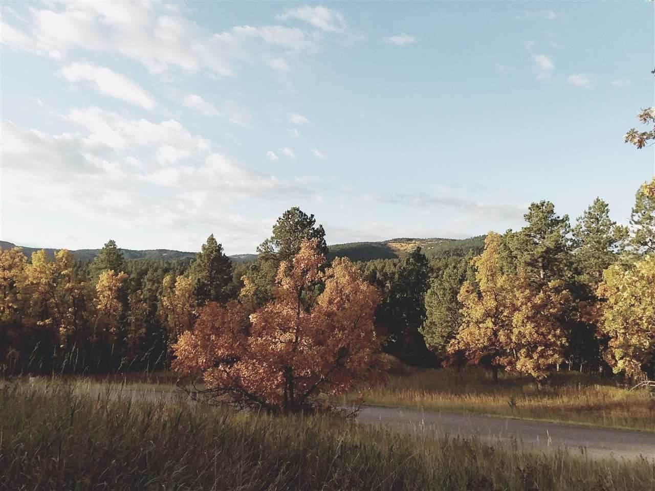 TBD Ticklegrass Road - Photo 1