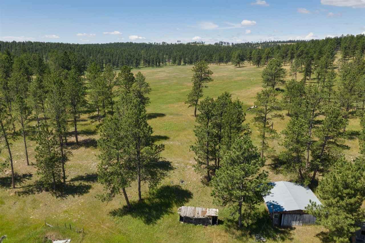 11390 Pass Creek Road - Photo 1