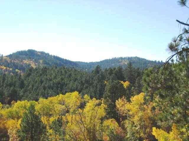 Lot 16 Address Not Published, Lead, SD 57754 (MLS #66230) :: Christians Team Real Estate, Inc.