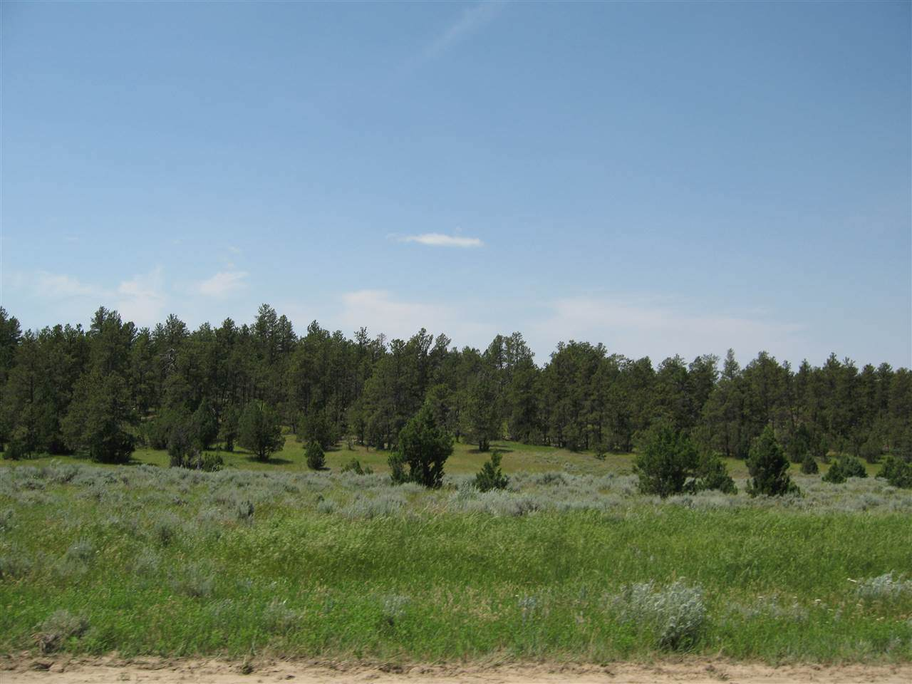 TBD Tract 25 R Ranch Road - Photo 1