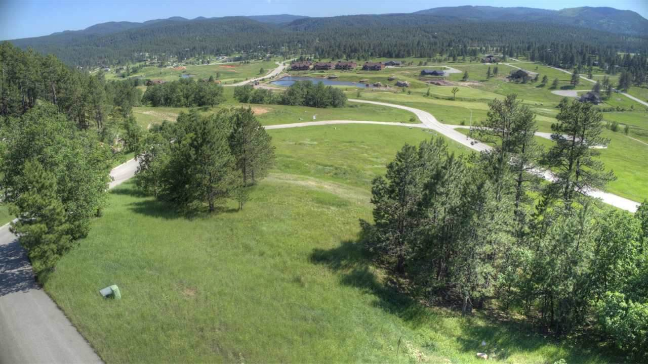 Lot 17 Apple Springs Road - Photo 1