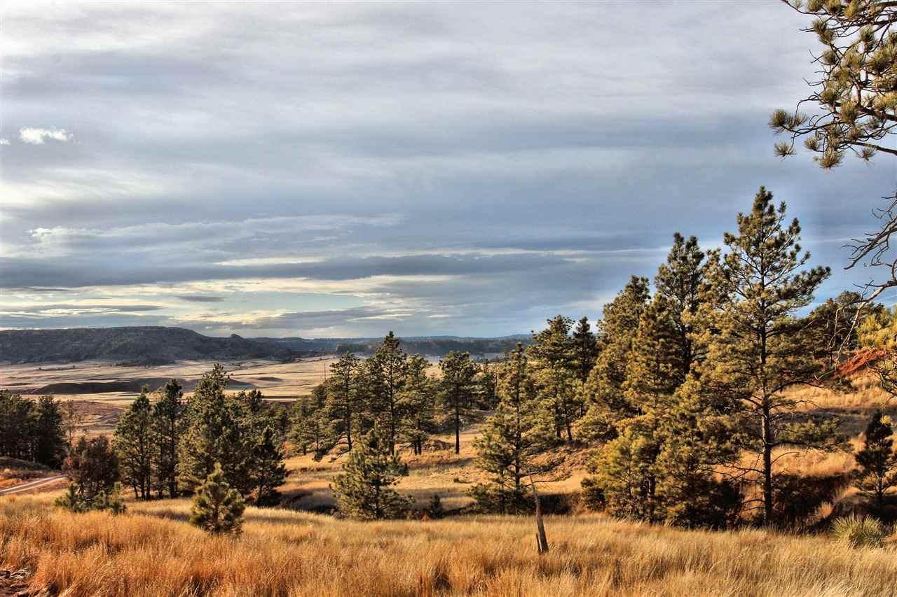 27327 Spirit Canyon Road - Photo 1