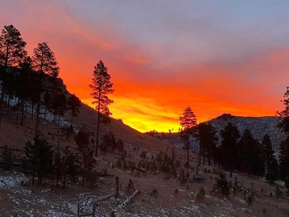11838 Elk View Loop - Photo 1