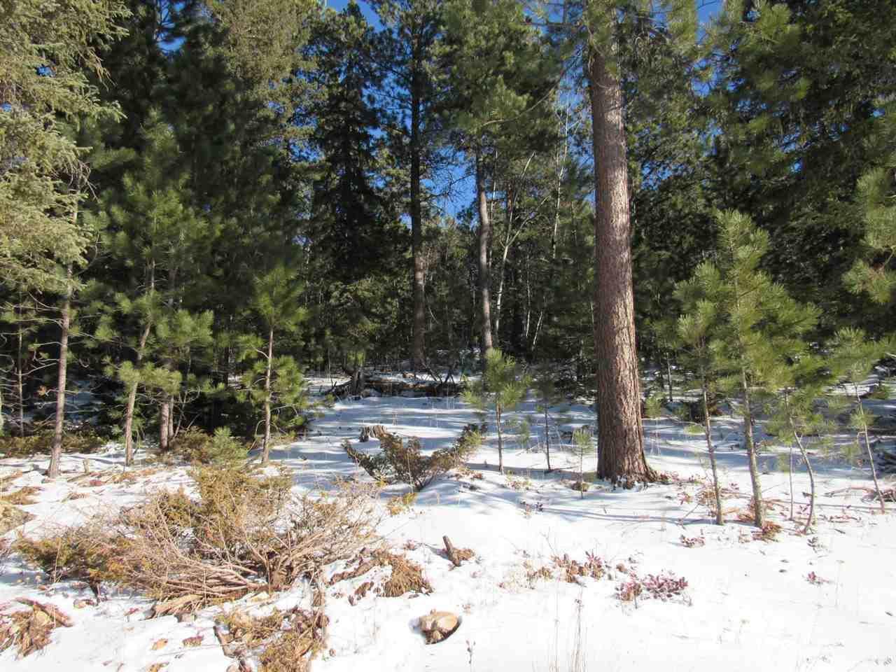 TDB Lot 47 Snowcat Road - Photo 1