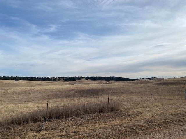 TBD Address Not Published, Piedmont, SD 57769 (MLS #67069) :: Daneen Jacquot Kulmala & Steve Kulmala