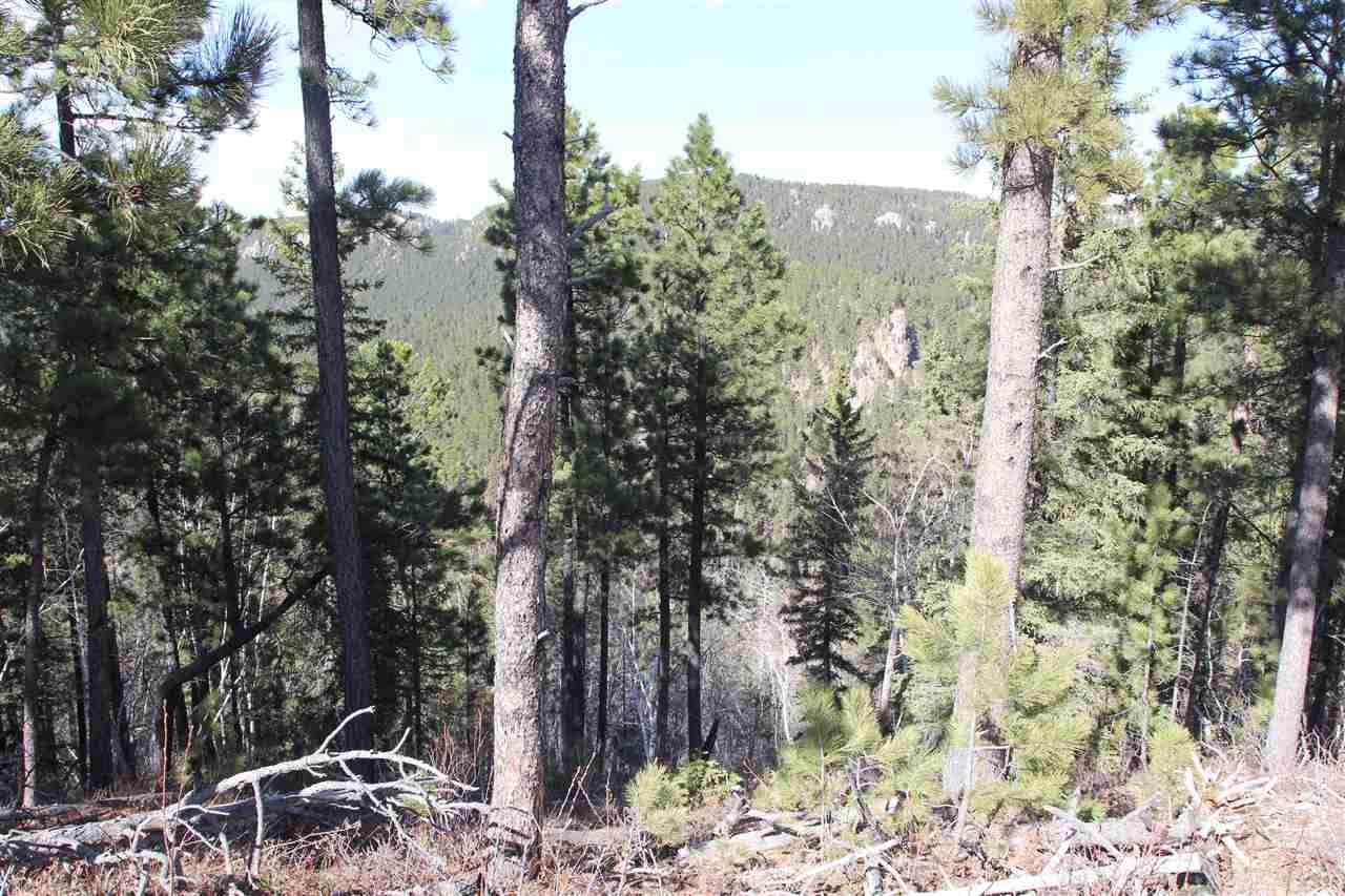 Spokane Lode #1 Ida Grey Road - Photo 1