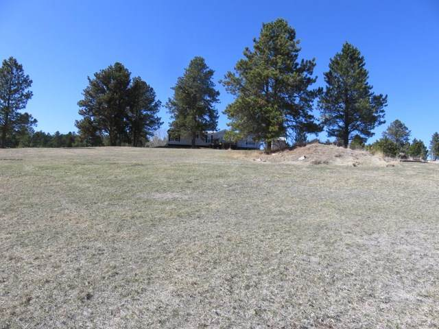 25259 Stagecoach Lane, Custer, SD 57730 (MLS #67990) :: Daneen Jacquot Kulmala & Steve Kulmala