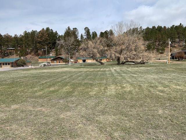 TBD Mt. Rushmore Road, Custer, SD 57730 (MLS #68034) :: Daneen Jacquot Kulmala & Steve Kulmala