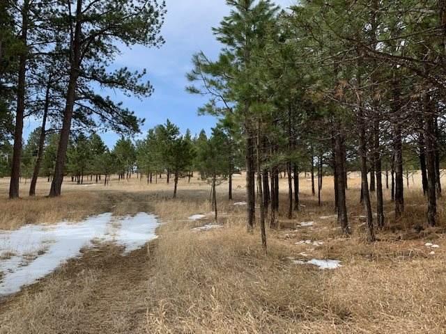 TBD Last Stand Road, Custer, SD 57730 (MLS #68043) :: Daneen Jacquot Kulmala & Steve Kulmala