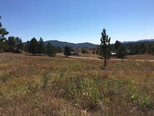 TBD Ruby Road, Hot Springs, SD 57747 (MLS #68396) :: Dupont Real Estate Inc.