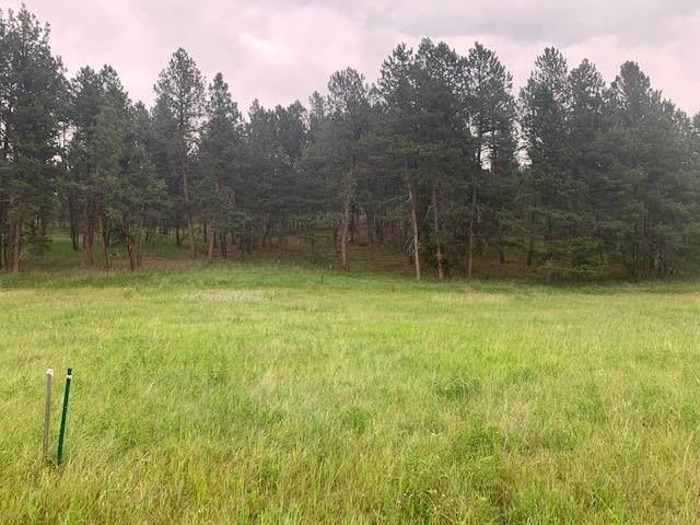 TBD Sidney Trail, Custer, SD 57730 (MLS #69201) :: Daneen Jacquot Kulmala & Steve Kulmala