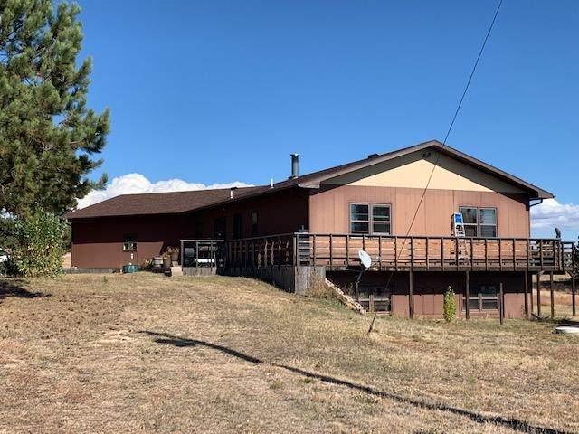 10419 Weber Drive, Edgemont, SD 57735 (MLS #70140) :: VIP Properties