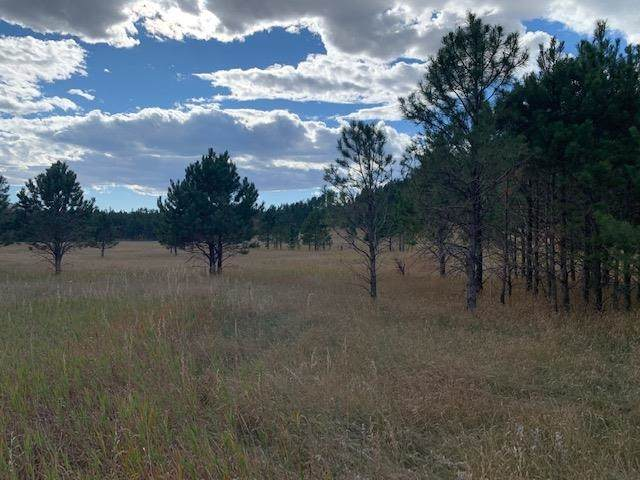 TBD Lower French Creek Road, Custer, SD 57730 (MLS #70146) :: VIP Properties