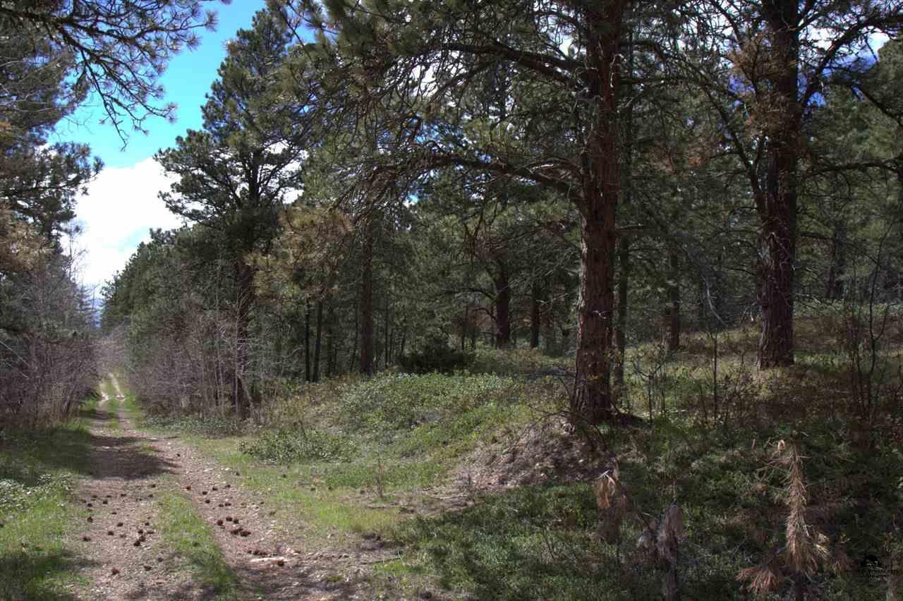 Tract F Last Chance Trail - Photo 1