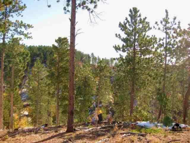 TRACT 4 Evergreen Estates, Lead, SD 57754 (MLS #51205) :: Christians Team Real Estate, Inc.