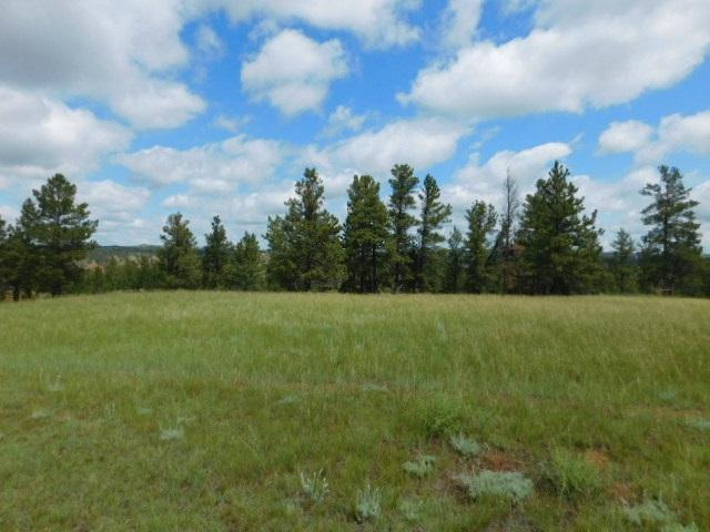 Trt  A of Lot 3 Spirit Canyon Road, Edgemont, SD 57735 (MLS #56999) :: Christians Team Real Estate, Inc.