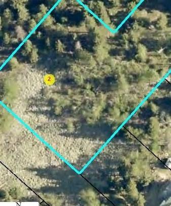 Lots 24&25 Buffalo Trail, Lead, SD 57754 (MLS #59598) :: Christians Team Real Estate, Inc.