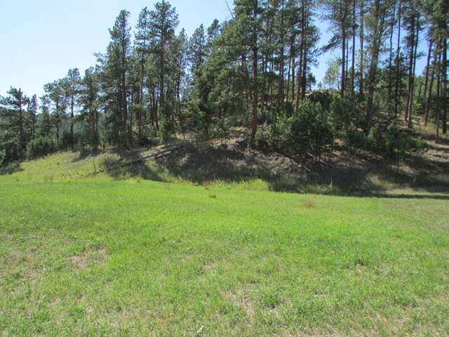 TBD Granite Point Court, Keystone, SD 57751 (MLS #60125) :: Christians Team Real Estate, Inc.