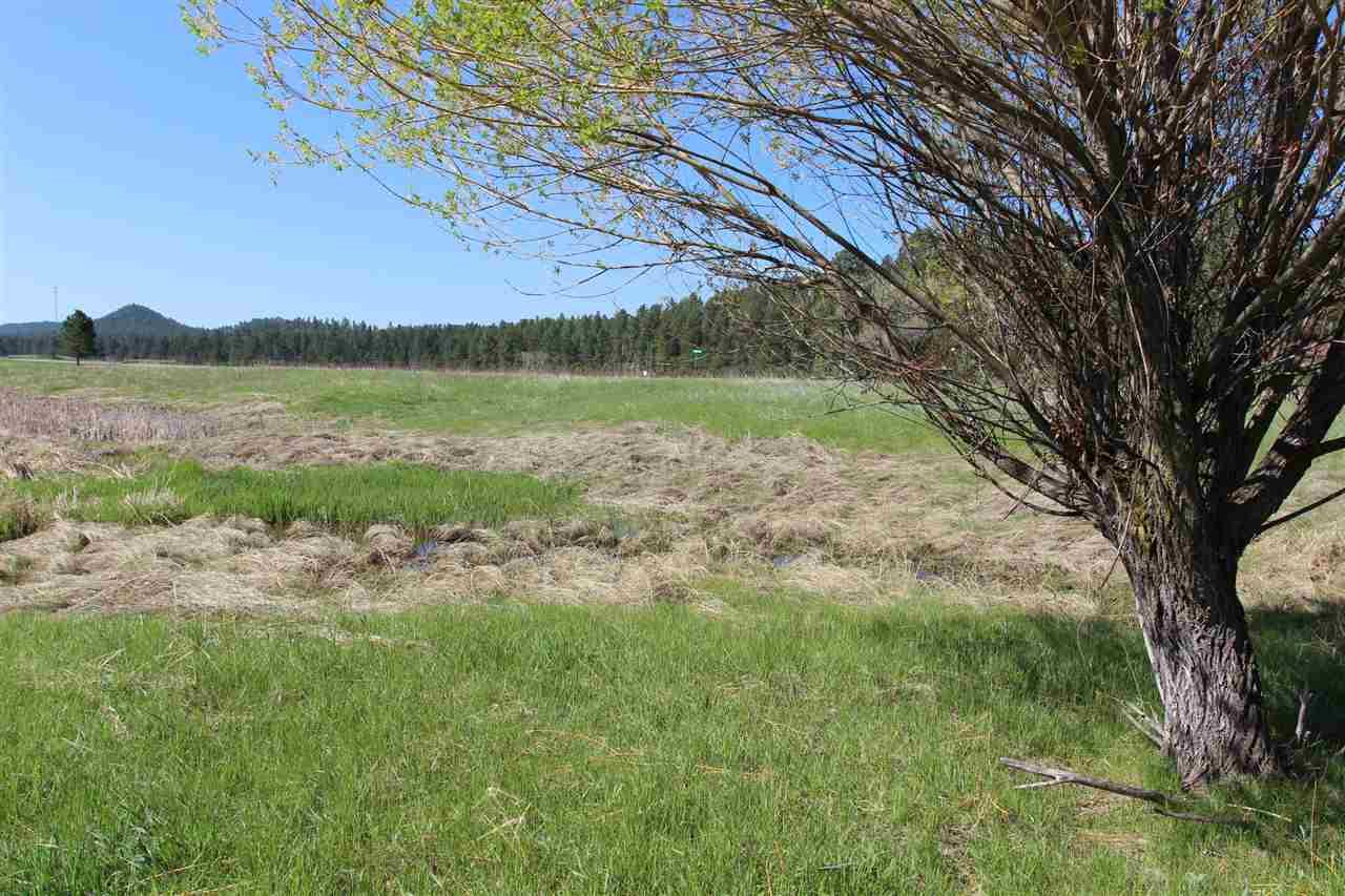 Lot 7 Golden Willow Parkway - Photo 1