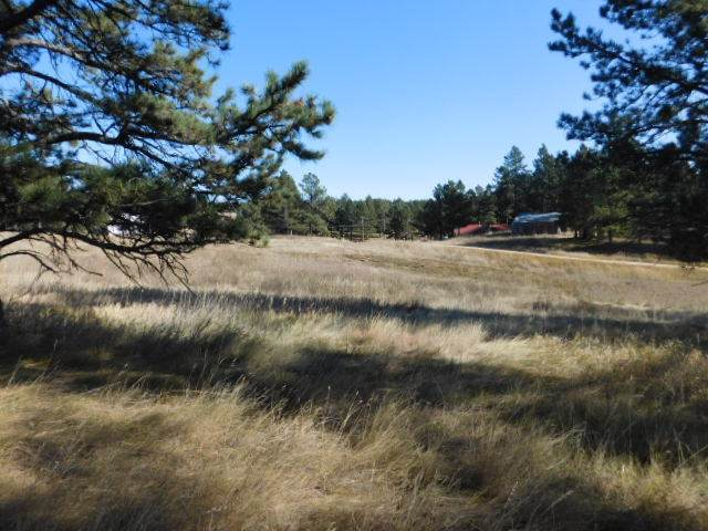 Tract 9 Lone Elk I, Custer, SD 57730 (MLS #62821) :: Dupont Real Estate Inc.
