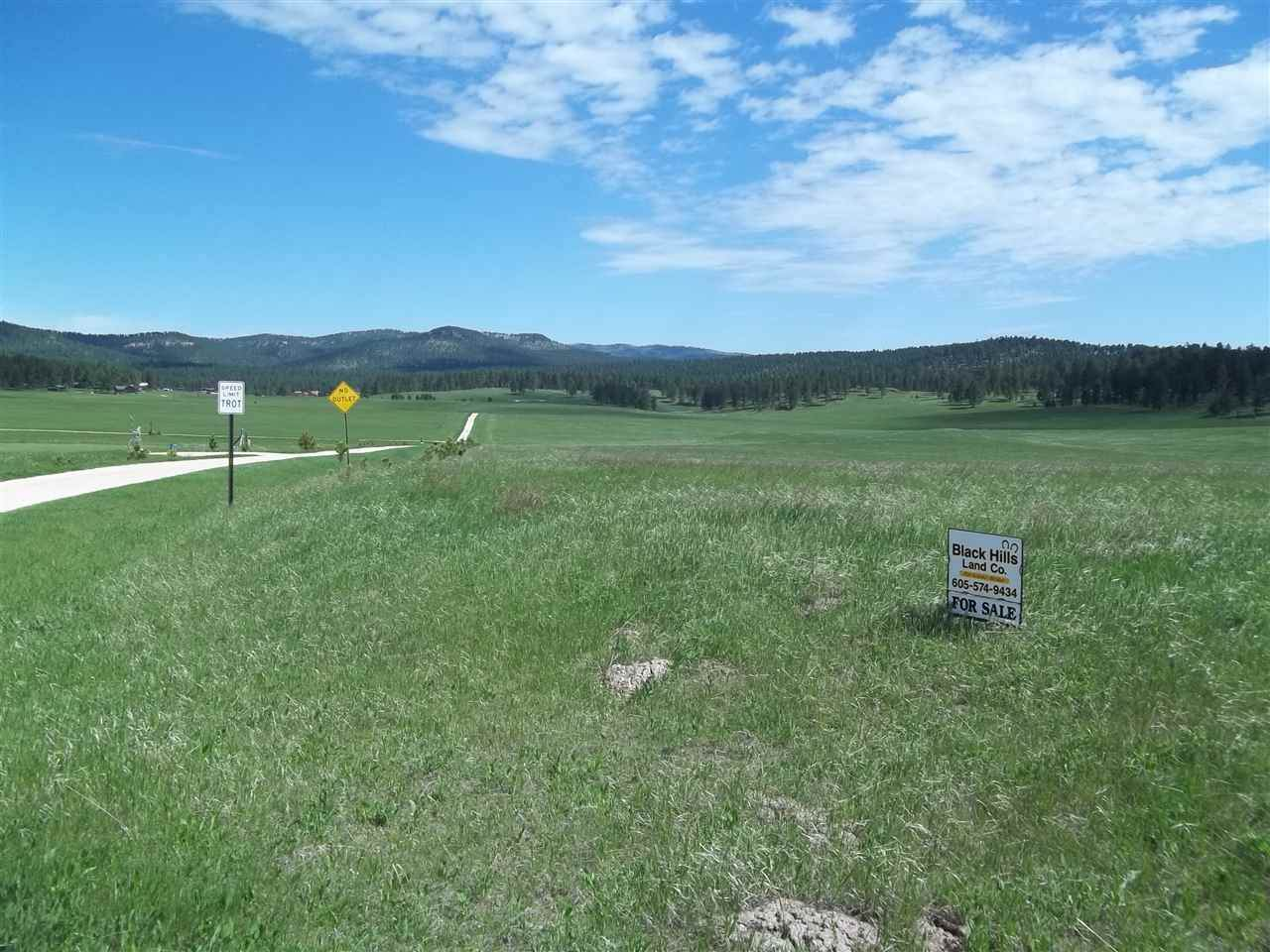 tbd War Bonnet Road - Photo 1