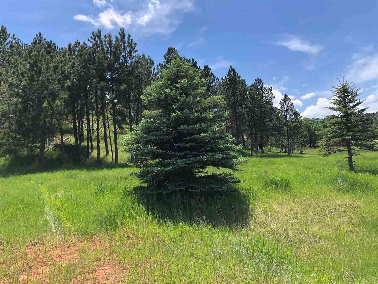 TBD Oak Drive - Photo 1