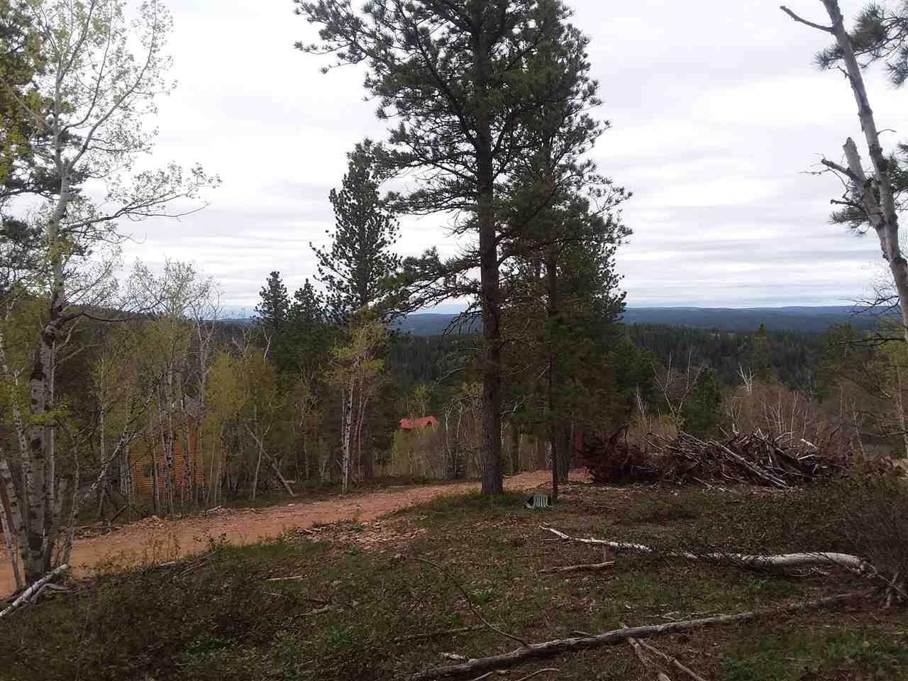 Lot 6 Eagle Trail - Photo 1