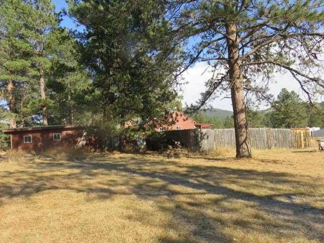 12667 Hazelrodt Cutoff, Custer, SD 57730 (MLS #66257) :: Christians Team Real Estate, Inc.