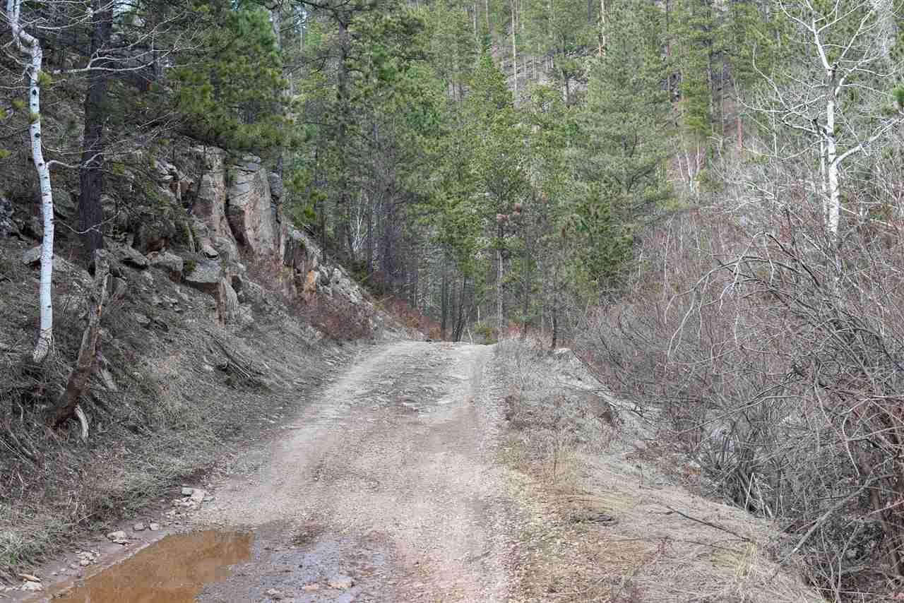 11131 Carbonate Road - Photo 1