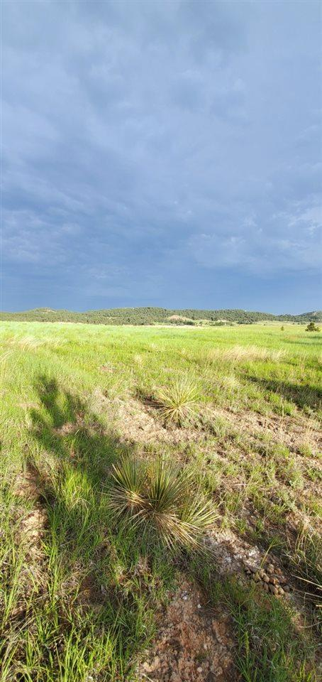 Lot 2 Red Dirt Road - Photo 1