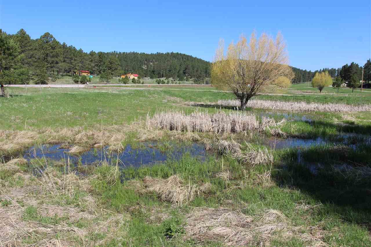 Lot 8 Golden Willow Parkway - Photo 1