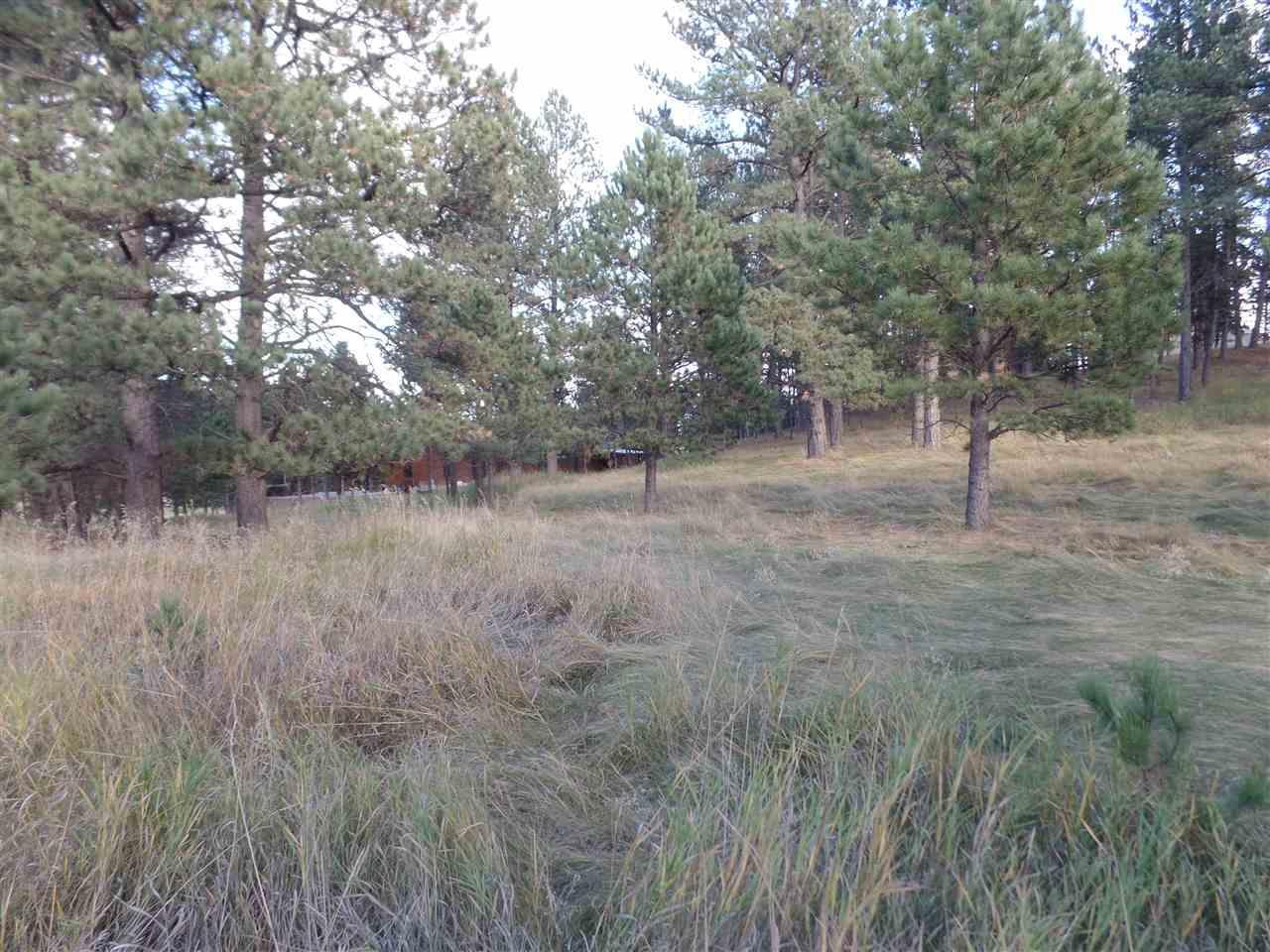 112 Trails End Court - Photo 1