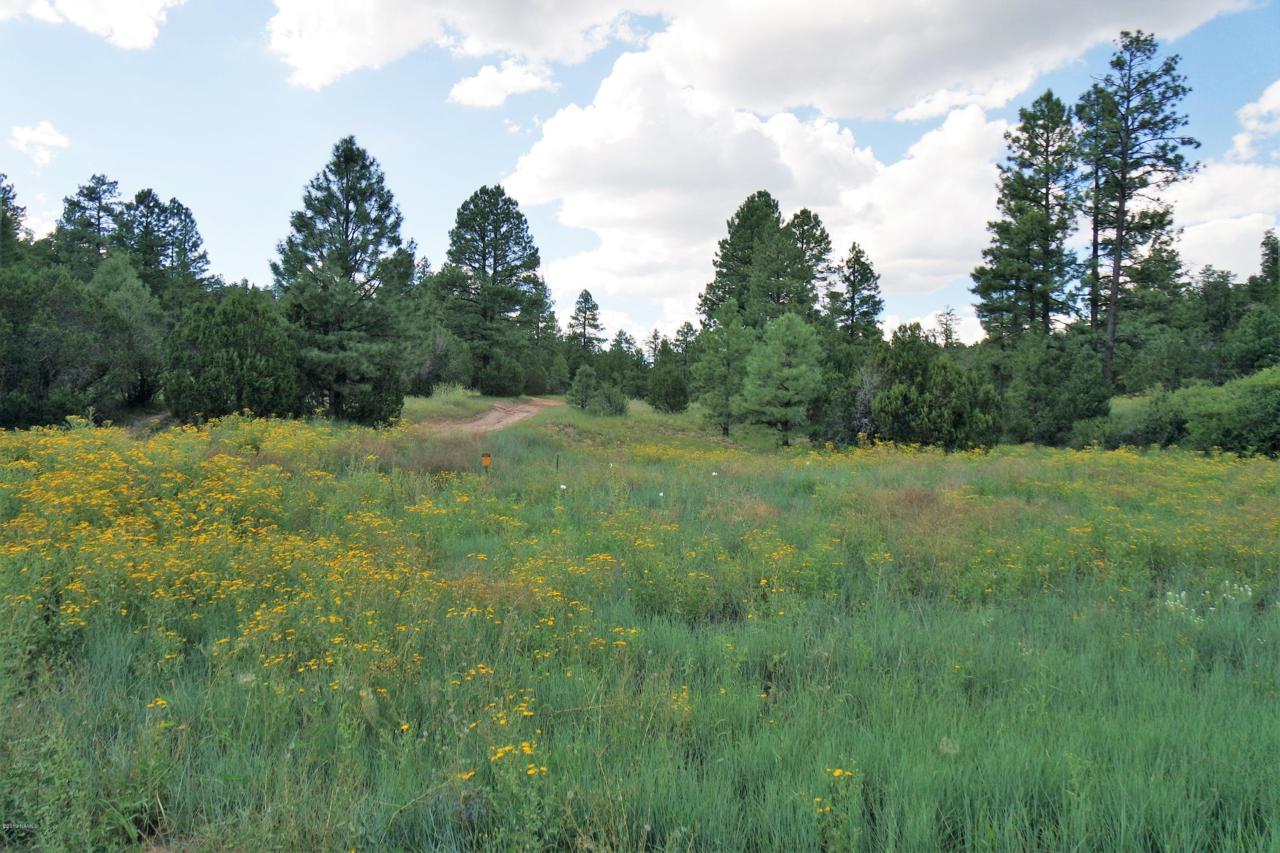 Tbd Black Canyon Road - Photo 1