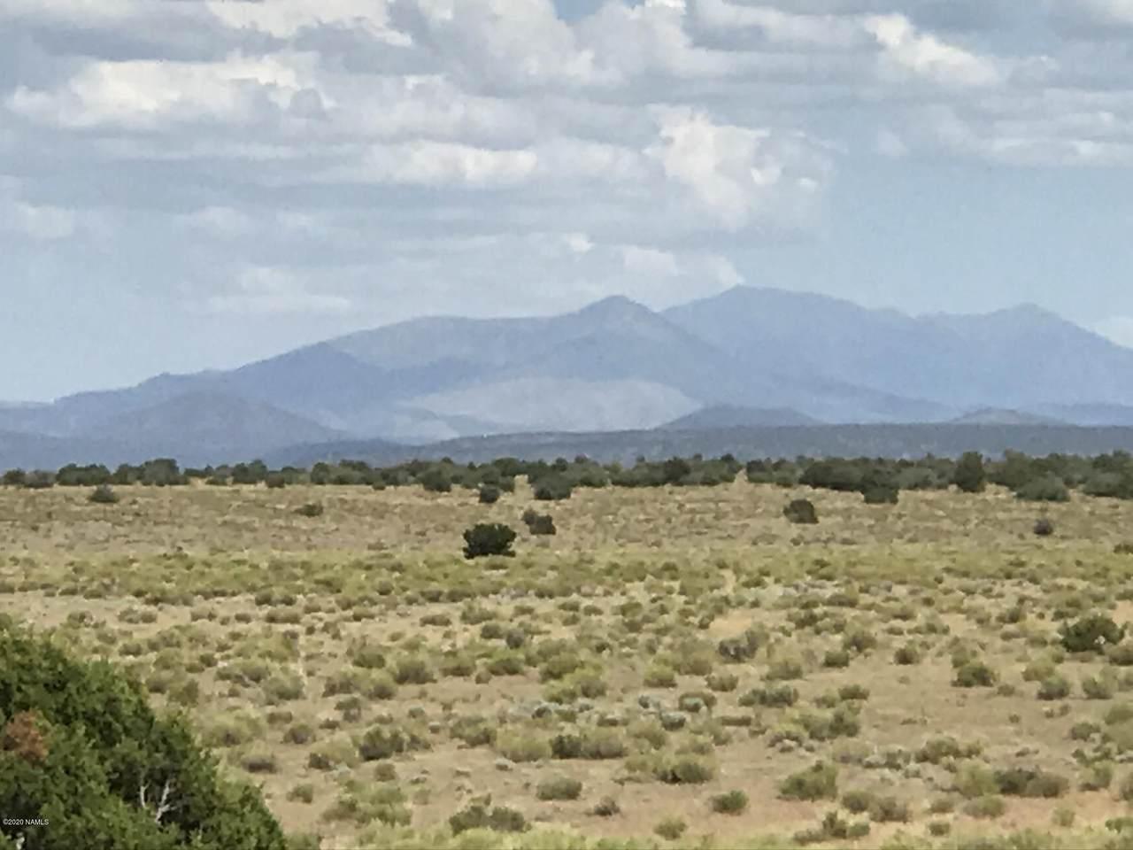 10558 High Butte Drive - Photo 1