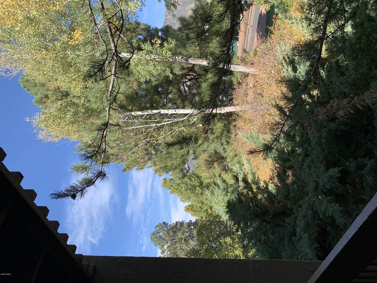 5825 Bear Paw Drive - Photo 1