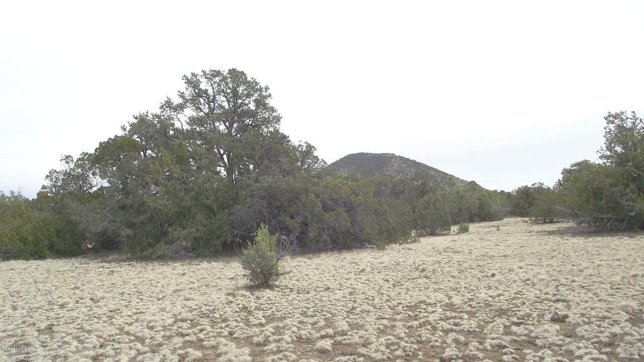 10741 Dry Gulch Trail - Photo 1