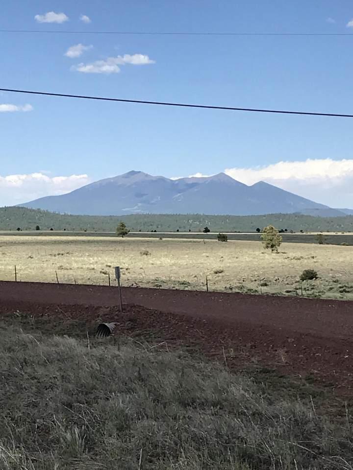 10917 Horse Hill Trail - Photo 1
