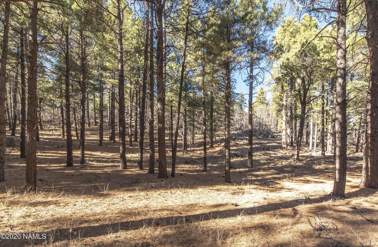1555 Pine Meadow Drive - Photo 1
