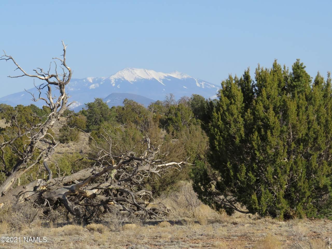 3413 Peakview Road - Photo 1