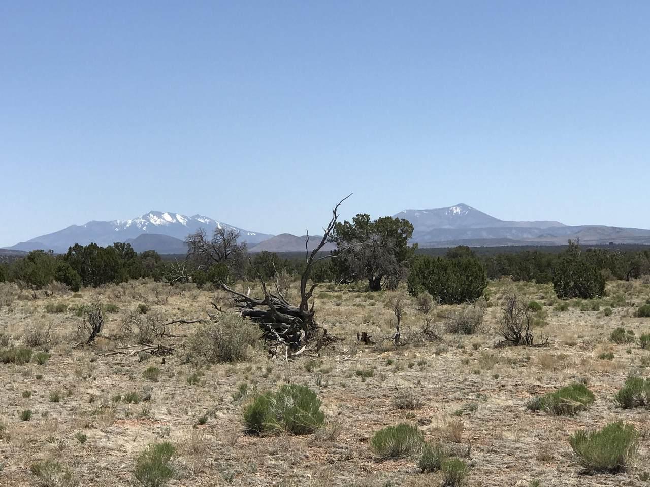 4176 South Rim Ranch Road - Photo 1
