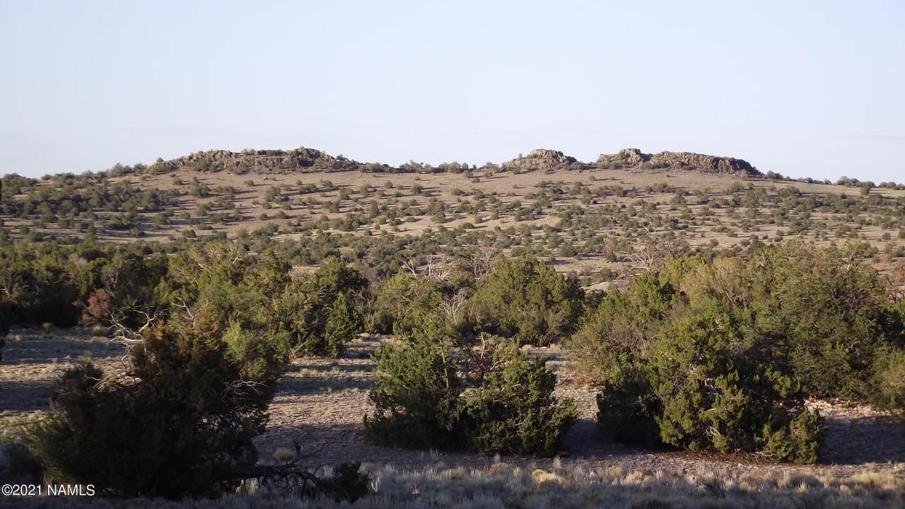 5215 Sun Dog Trail - Photo 1