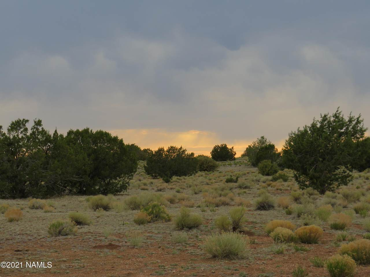 9260 Mineral Wells Road - Photo 1