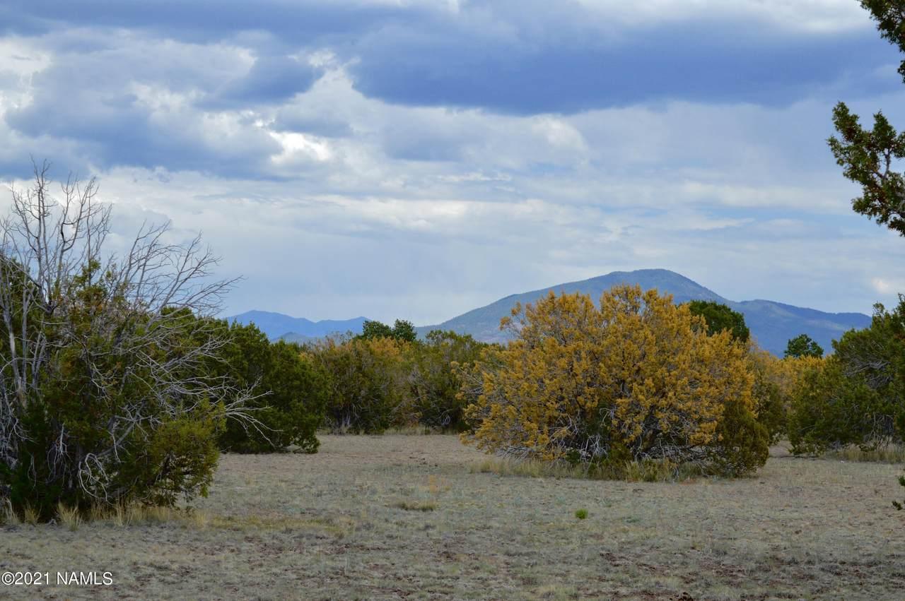 1311 Utopia Trail - Photo 1